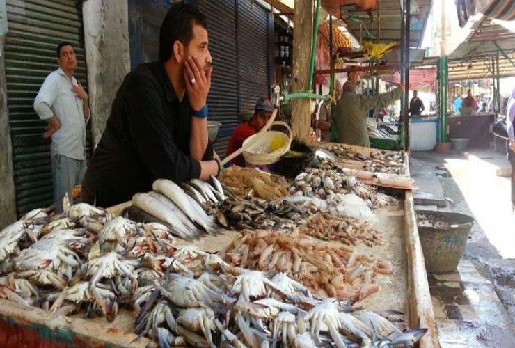 أسعار الأسماك اليوم الجمعة 13\12\2019 في سوق العبور للجملة