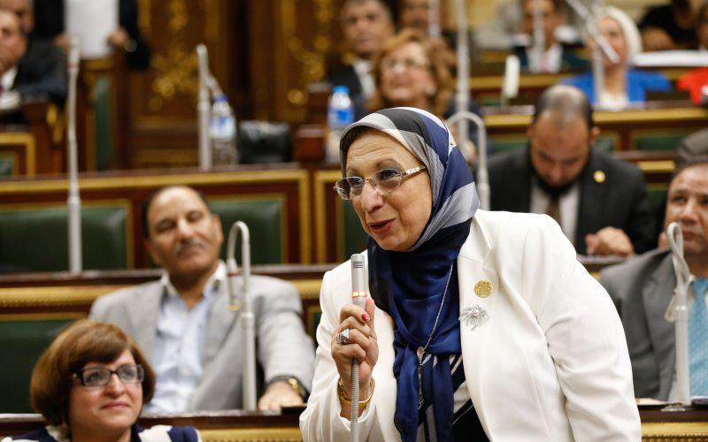 أول تحرك برلماني بشأن أزمة هدم حديقة عروس النيل ومسرح قصر ثقافة المنصورة