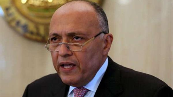 وزير الخارجيةيتلقى اتصالًا من نظيره البرازيلي عبر الفيديو كونفرانس