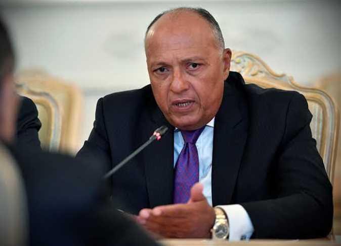 سامح شكري: اجتماع وزراء الخارجية العرب أكبر دعم للقضية الفلسطينية (فيديو)